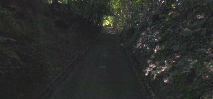Hill into Lytchett